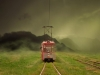 train_flight_grass