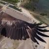 Droni, ecco le foto più belle