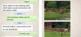 Snapchat e Whatsapp nel periodo della condivisione fotografica