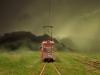 train_flight_grass