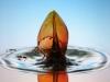 Copyright 2006 Liquid Sculpture - www.liquidsculpture.com