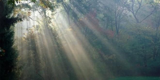 La luce naturale